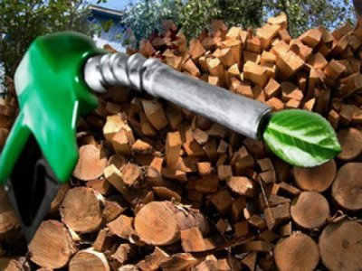 Ученые: бензин будет расти надервьях