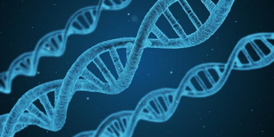 Ученые: Человек унаследовал отнеандертальцев шизофрению иартрит
