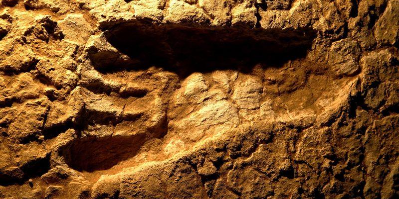 Огромные окаменелые следы ног обнаружили наюго-западе Китая