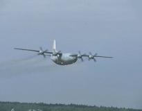 По меньшей мере три человека погибли в результате крушения Ан-12