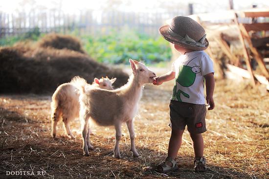 Ученые: Жизнь на ферме среди животных укрепляет организм
